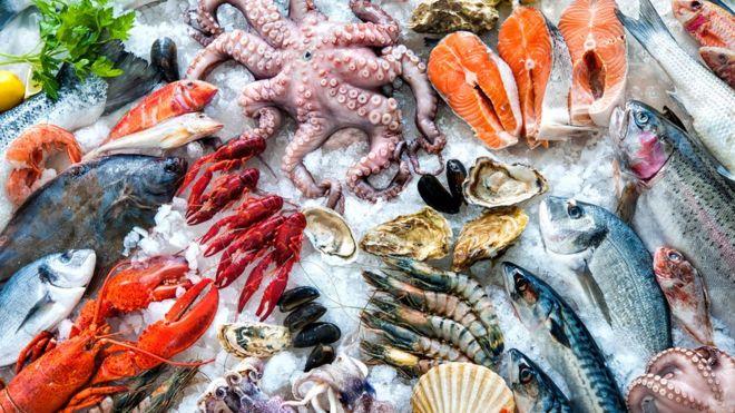 mariscos y pescados